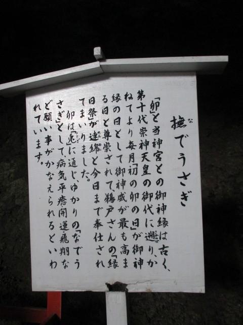 IMG_9129.JPG
