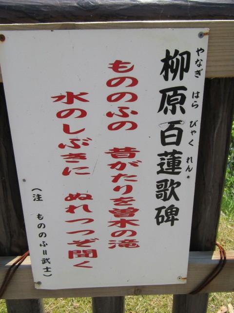 IMG_0223.JPG